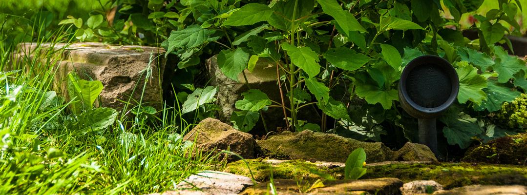 Unauffälliger Außenlautsprecher im Gartengrün versteckt