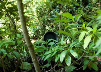 Gartentage 2017 - mediacraft zu Gast bei Wragge Gärten