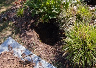 SLS Gartenlautsprecher-System von Sonance