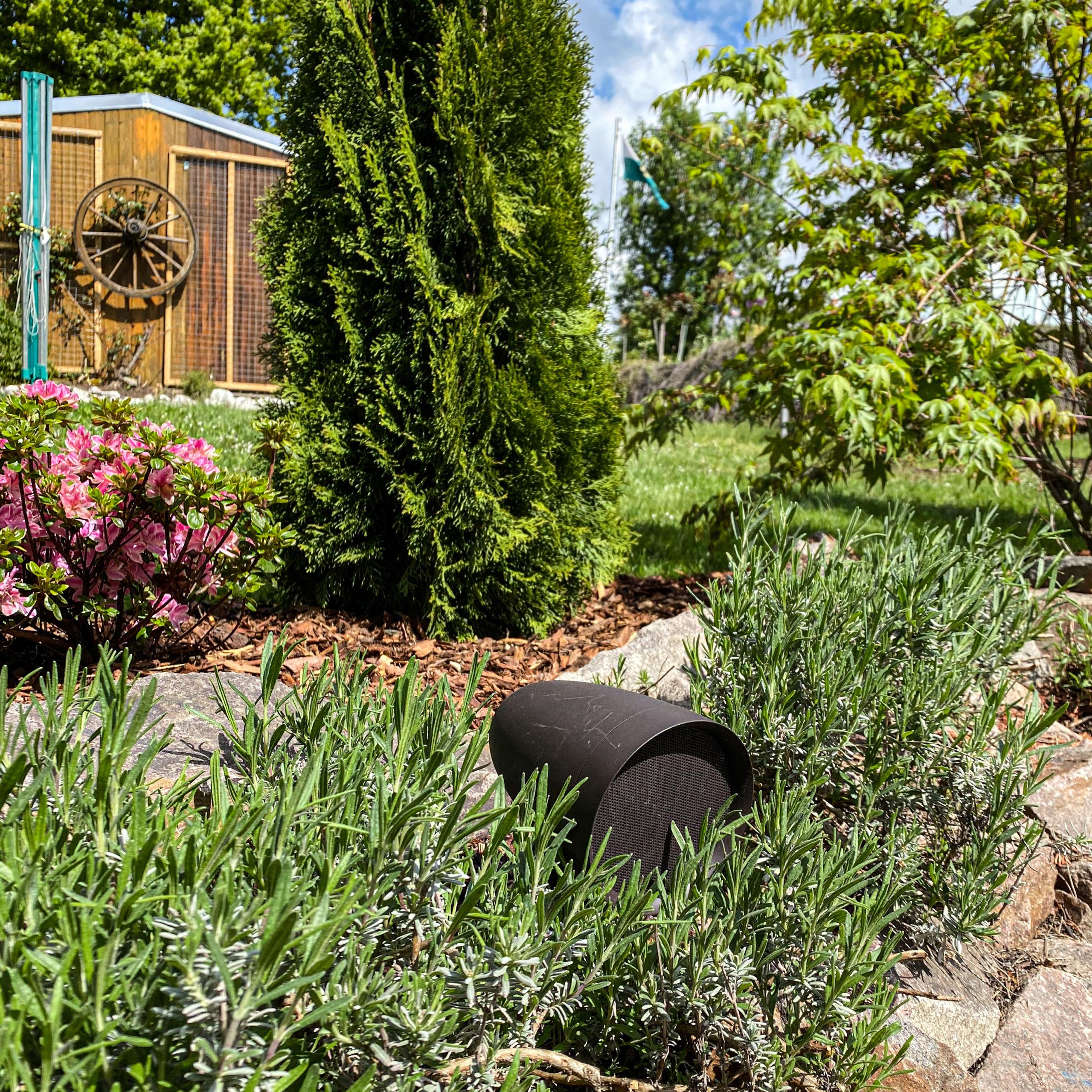 Satellitenlautsprecher - Sonance Patio Außenlautsprecher im Garten